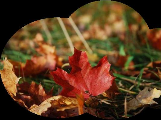 Den skřítka podzimníčka 23.10.2018 v 15:30